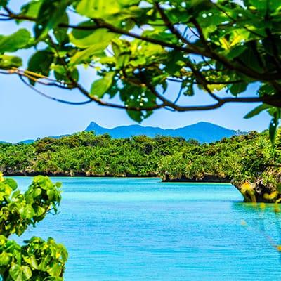 石垣島 ✕ 100,000円以下のプラン